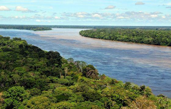 Amazonia. Fot. Neil Palmer. Creative Commons